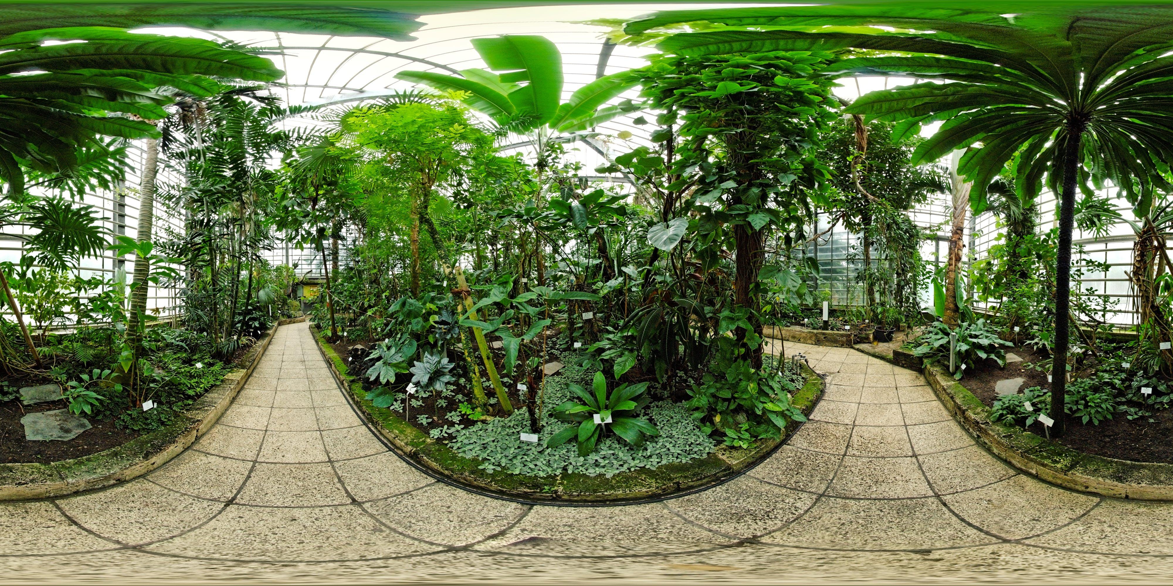 freiburg, germany - botanischer garten | favorite places, Garten und erstellen